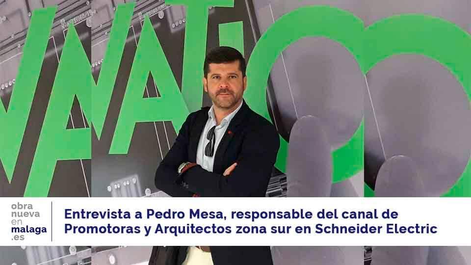 Pedro Mesa Schneider - obra nueva en Málaga