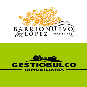 Barrionuevo & López Real Estate - obranuevaenmalaga